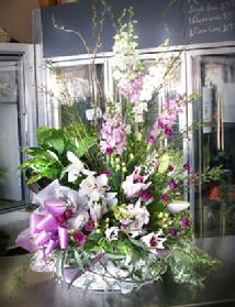 Order Church Easter Flowers Wholesale Flowers