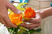 Flower Delivery Minneapolis on Cheap Flowers  Discount Flowers  Flowers For Cheap   Minneapolis