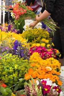 Florist In Wayzata Flower Delivery This Vibrant Autumn Bouquet Is Red Hot Seasonal Flowers